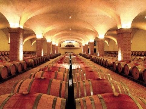 Wine barrels in cellar at Castiglion del Bosco.