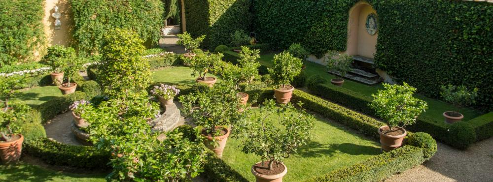 View of the Lemon Garden from above
